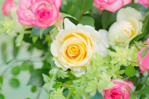 花、フラワー、バラ