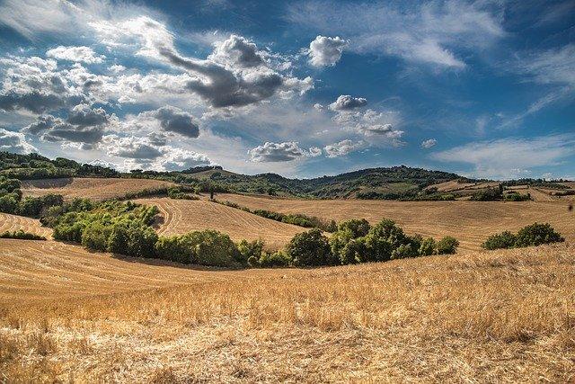 農地、大地、丘、農業